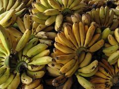 Banana19